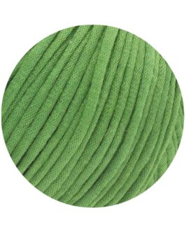 Cashseta<br />1Hellgrün