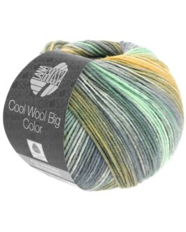 Cool Wool Big Color<br />4025Mint/Maisgelb/Ecru/Grau/Oliv/Khaki